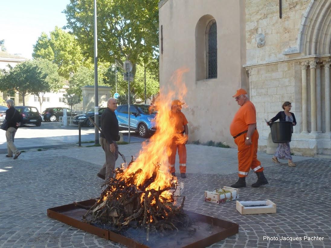 Brûlage ceps Puyricard 015.jpg